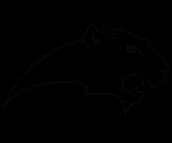 Пантера 4