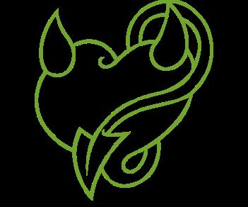 Сердце 19