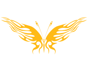 Бабочка 3