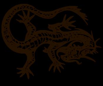 Дракон 196