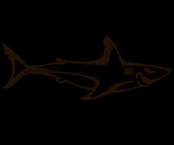 Акула 5
