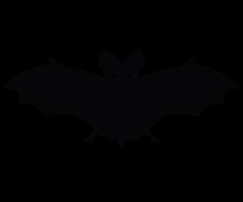 Летучая мышь 7