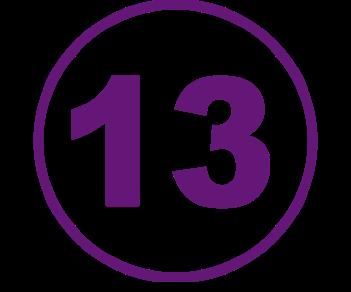 13-гоночная