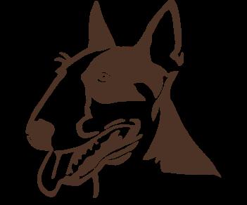 Бультерьер собака