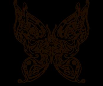 bio бабочки