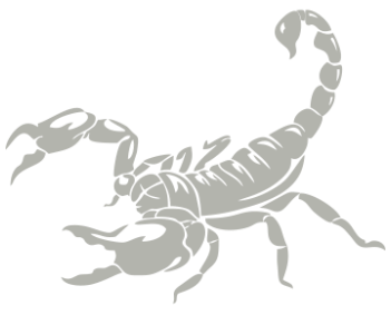 Скорпион 15
