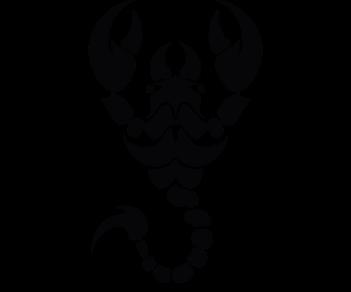 Скорпион 7