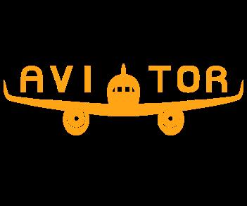 Авиатор летчик
