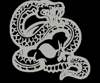 Череп змея