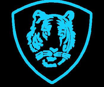 ВВ Внутренние войска МВД тигр шеврон
