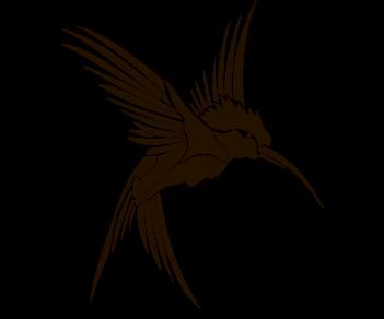 Птица Колибри