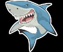 Акула зубы