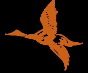 Летящая утка