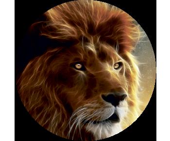 На запаску лев огненный
