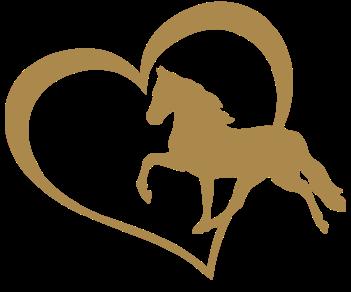 Любовь лошадь