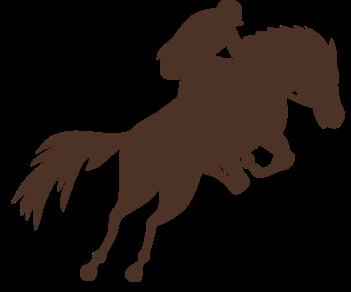 Конный спорт наездник 2