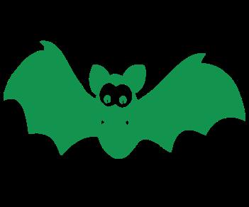 Летучая мышь в полете 4