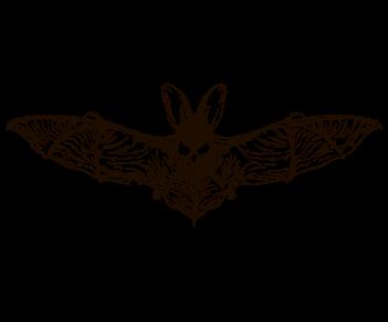 Летучая мышь 3