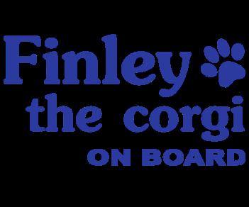Finley the corgi