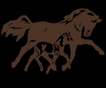 Лошадь и жеребенок 3