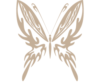 Бабочка 23