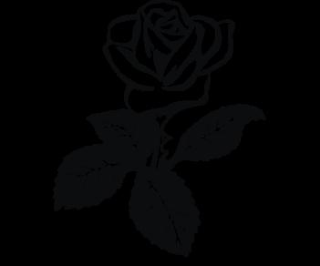 Роза 3-цветок
