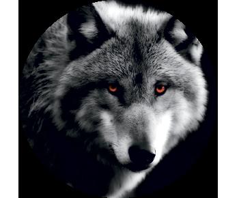 На запаску волк 4