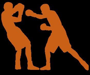 Боксеры бой