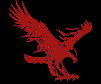 Орел огонь