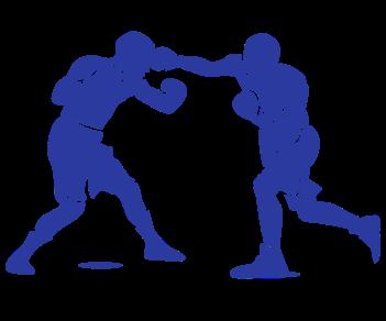 Боксеры спорт 2
