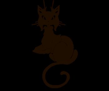 Cat 50