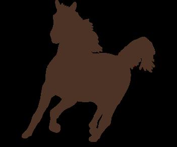 Лошадь-бег