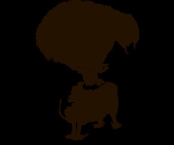 медведь и овца