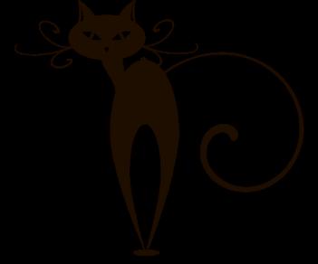 Crazy cat 6