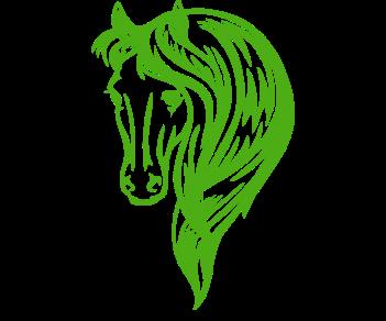 Лошадь 7