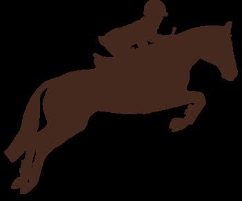Наездник конный спорт