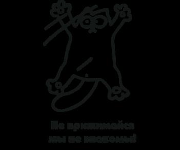 Кот Саймона 67
