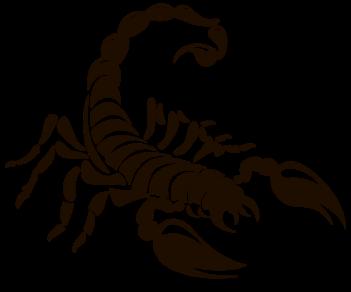 Скорпион 11