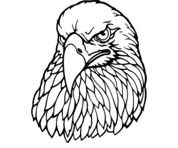Орел 12