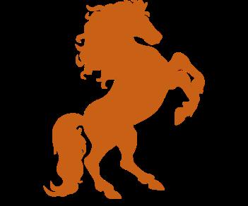 Лошадь  дыбы