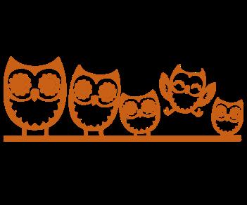 Совы семья