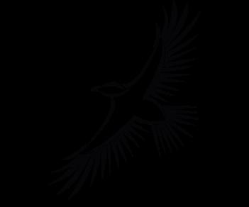 Орел 8